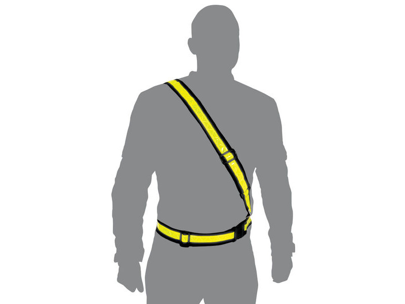 Oxford Bright Belt L click to zoom image